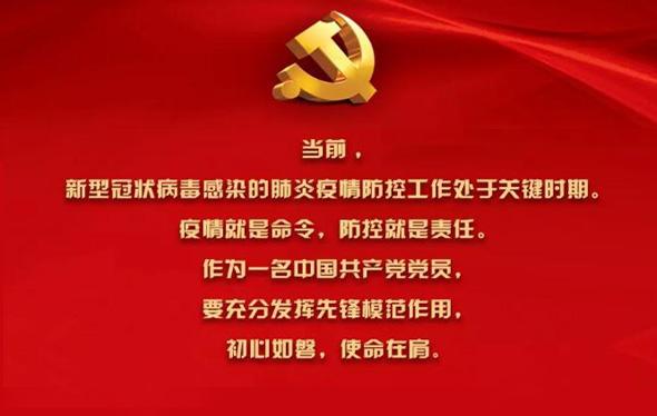 """战""""疫""""进行时 我是中共党员我承诺"""