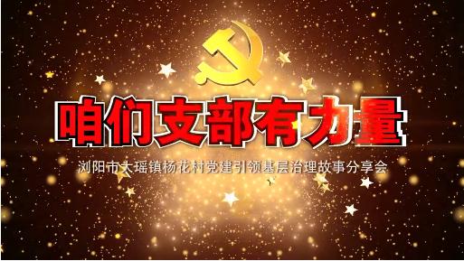 《咱们支部有力量——浏阳市大瑶镇杨花村故事分享会》(全四集)