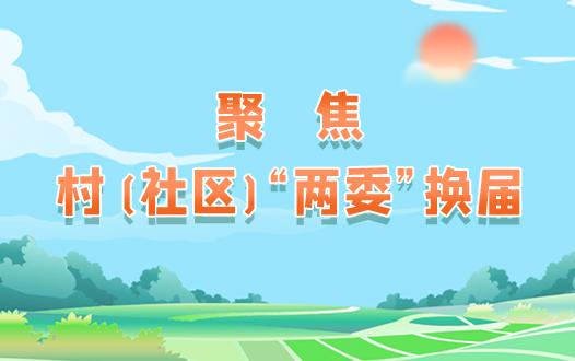 """聚焦村(社区)""""两委""""换届"""